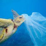 コンタクトレンズはプラスチックゴミ